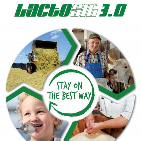 Lactosil 3.0